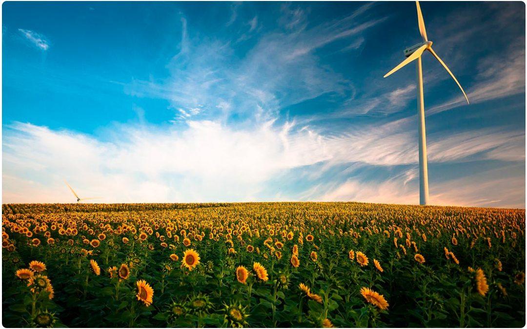 Consultora ambiental con servicio de energía limpia