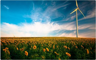 Energía Limpia: reduce costes mejorando el comportamiento ambiental